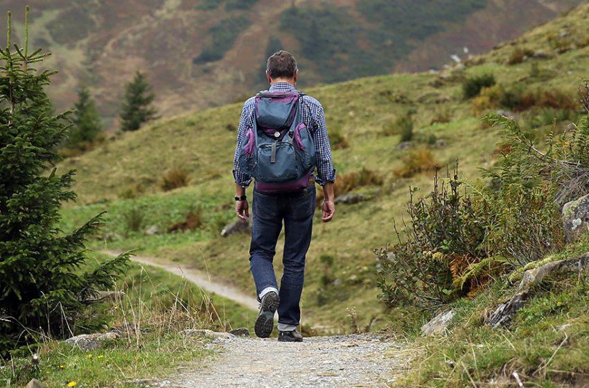 Wandern – Termine & Infos